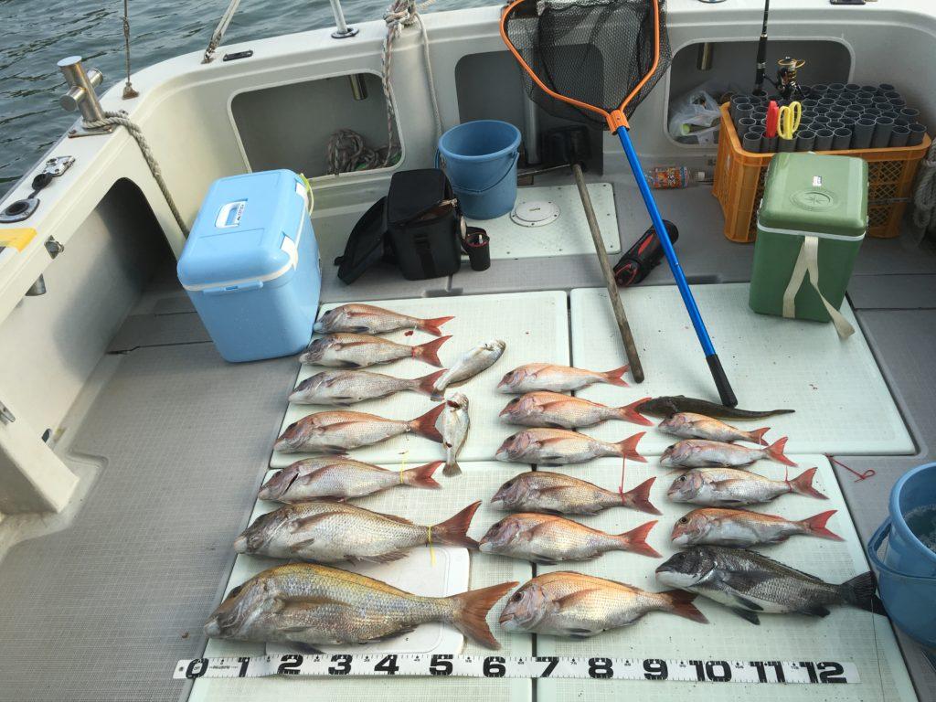 釣果鯛60オーバー