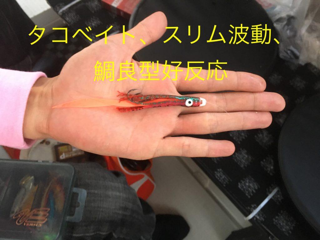 鯛ラバ/2016年6月30日釣果
