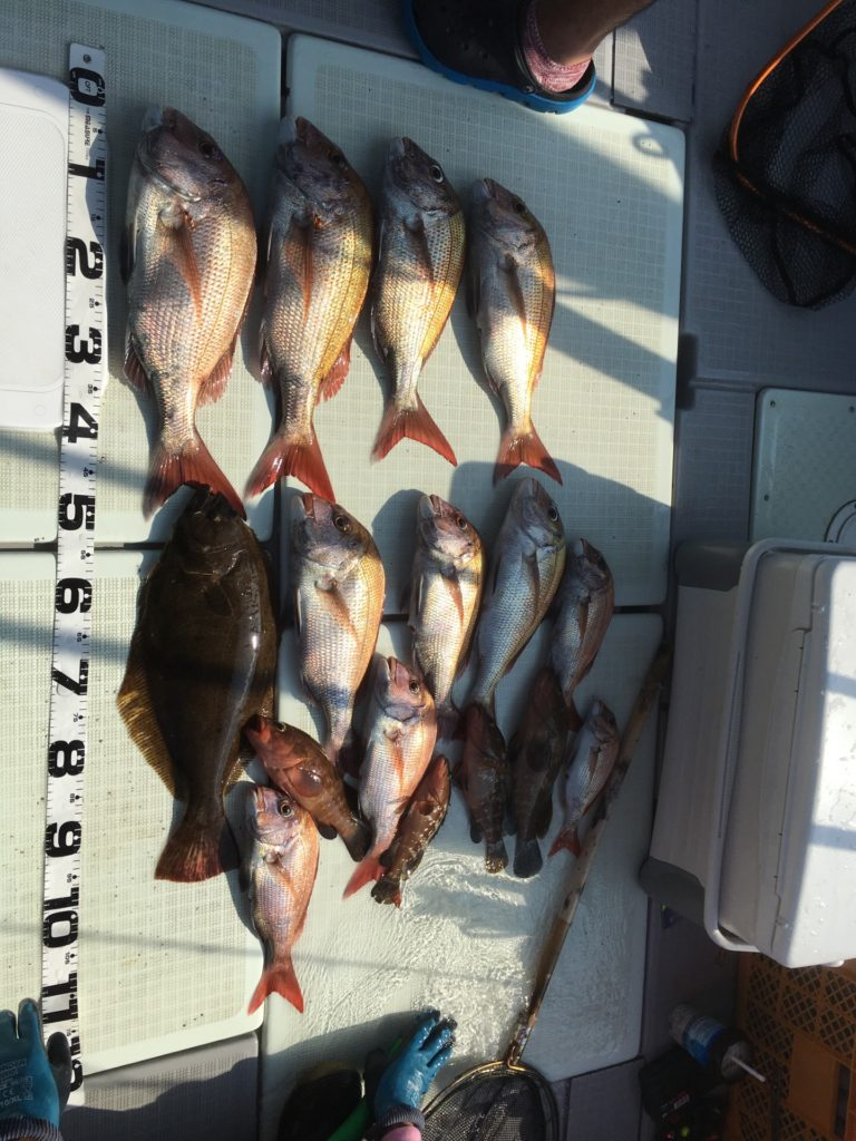 2016.7.27鯛ラバ