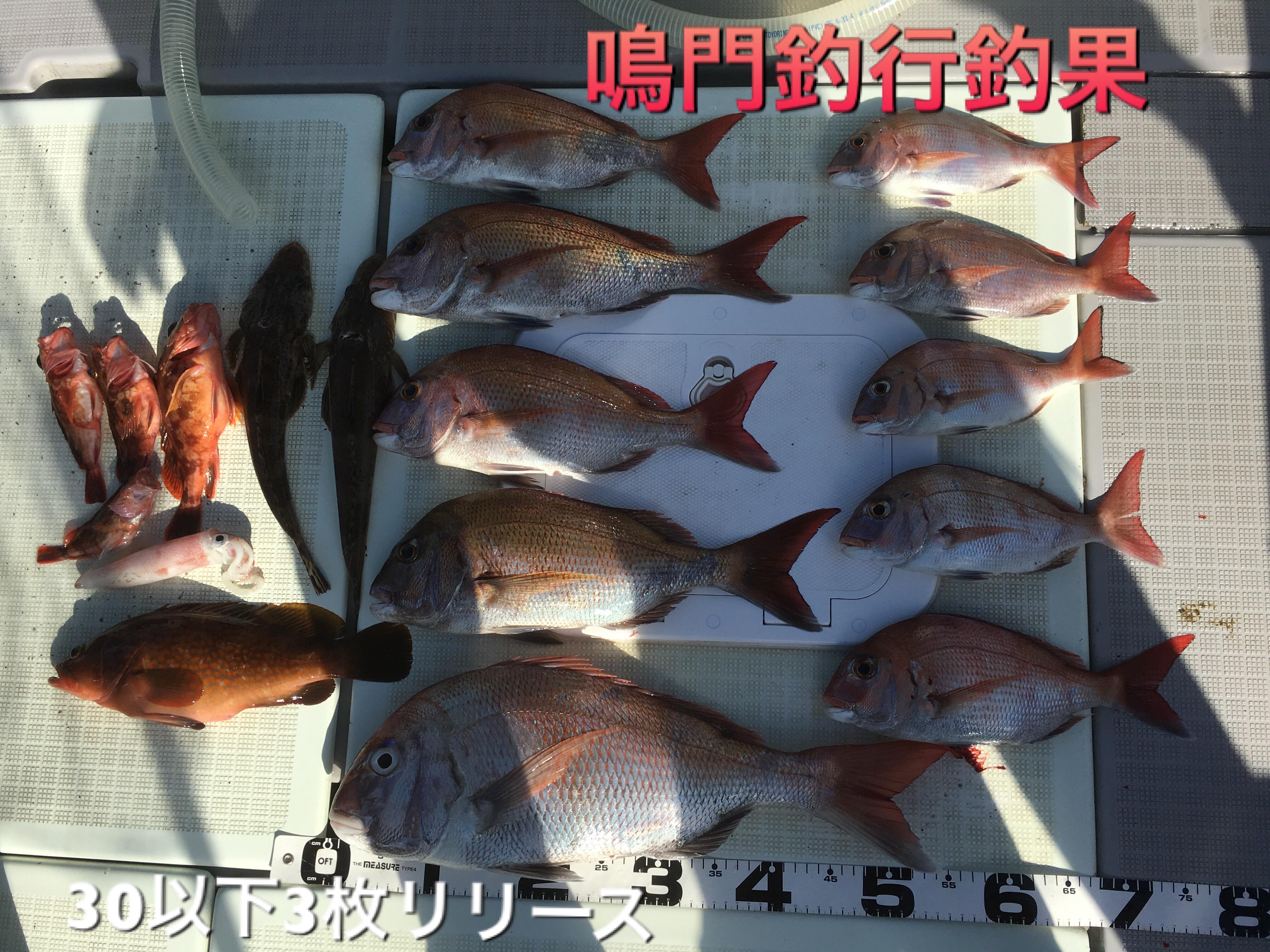2016年8月24日鯛ラバ鳴門調査釣行釣果